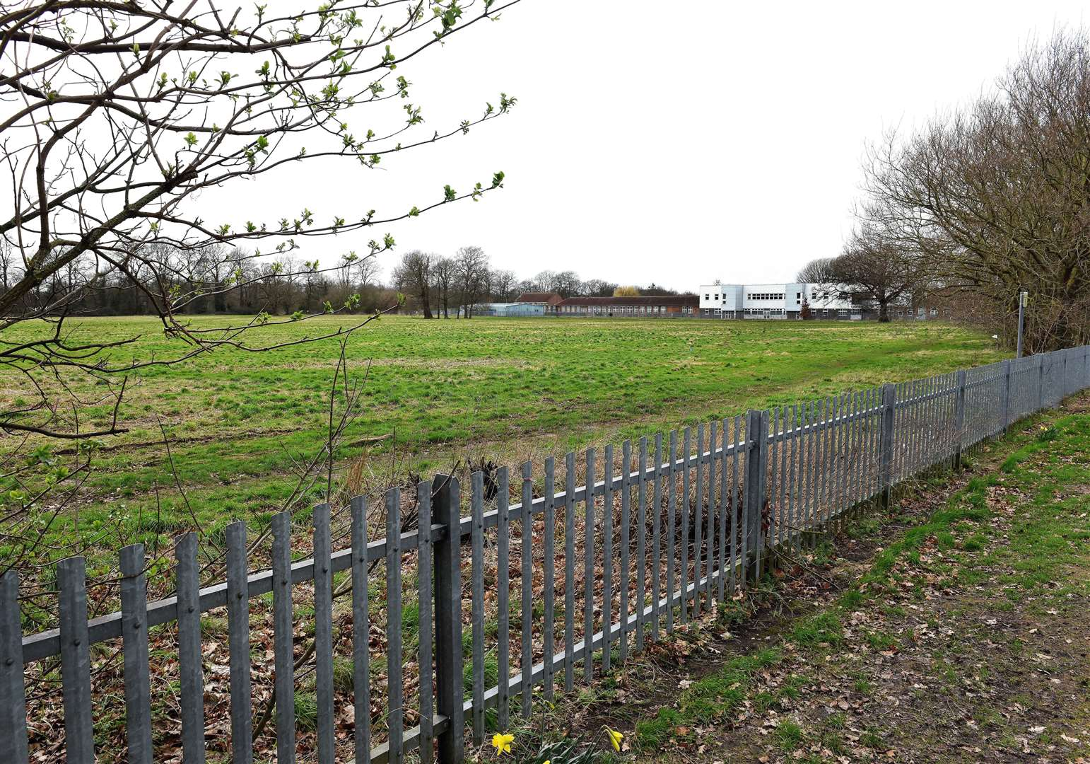 Council chiefs have backed plans to scale back the proposed development of land off Parkway in Gaywood.