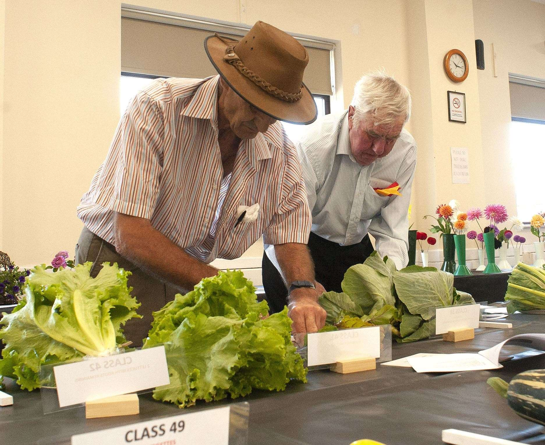King's Lynn Horticultural Show at South Wootton Village Hall..Pictured Judging Graham Edwards . Paul Nolan.. (50218087)