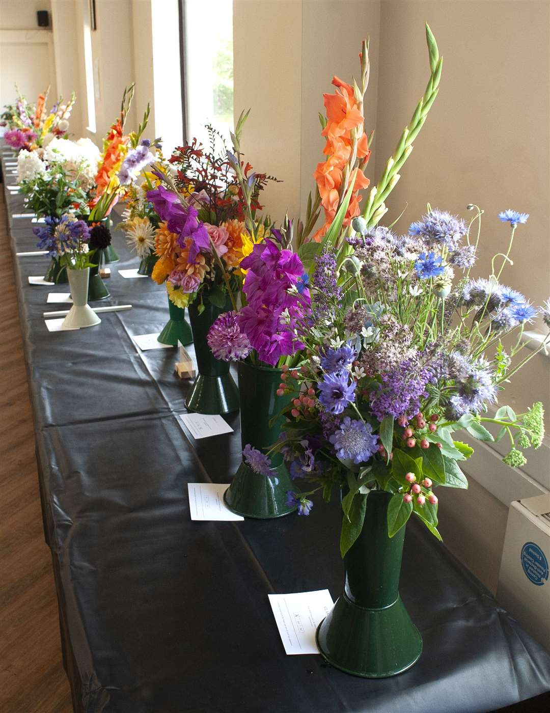 King's Lynn Horticultural Show at South Wootton Village Hall... (50218093)