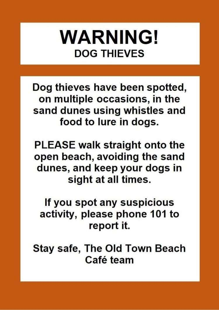 The poster warning dog owners of pet thieves at Old Hunstanton. (44854459)