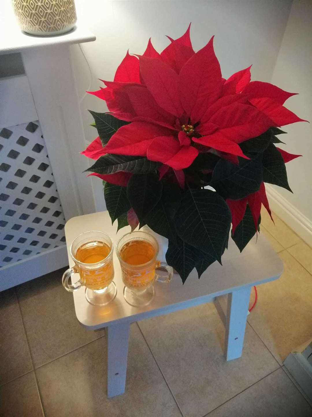The mulled cider being served as a takeaway product during the pub's closure (43323984)