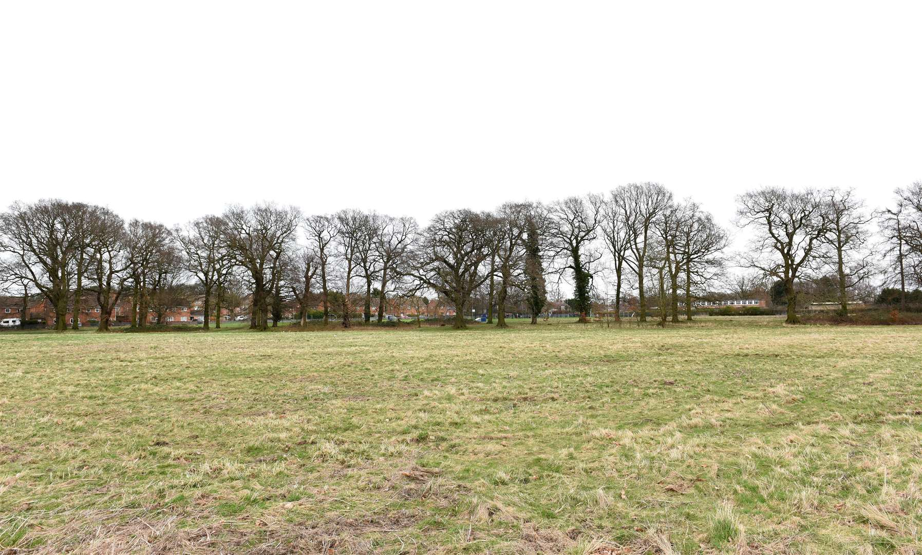 GV Picture of Land which is being Proposed for Possible New Housing Development for the Gaywood Area...Land next to the King's Lynn Academy Site off Queen Mary Road/Parkway Gaywood, looking towards the Play Area and Howard Junior School off Parkway. (29878329)