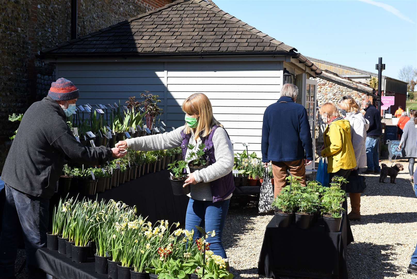 Creake Abbey Spring Gift Fair..Visitors to this Plant stall at the Spring Fair. (46288992)
