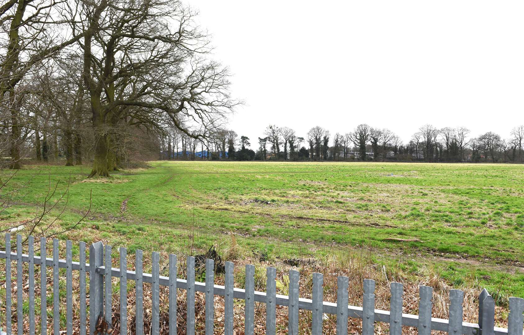 GV Picture of Land which is being Proposed for Possible New Housing Development for the Gaywood Area...Land between King's Lynn Academy Site off Queen Mary Road/Parkway Gaywood and Howard Junior School. (45317510)