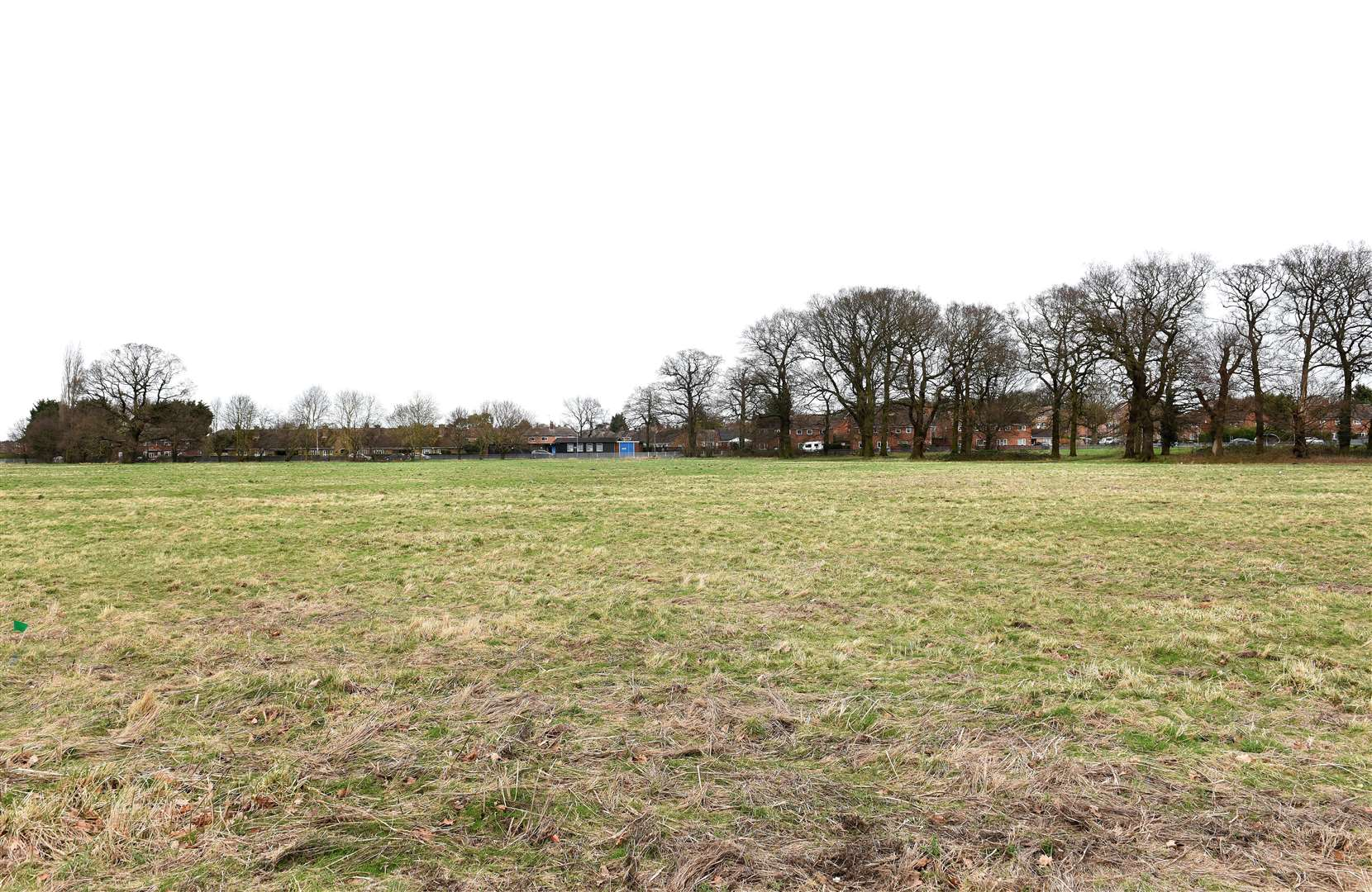 GV Picture of Land which is being Proposed for Possible New Housing Development for the Gaywood Area...Land next to King's Lynn Academy Site on Queen Mary Road/Parkway, looking towards Parkway. (49550520)